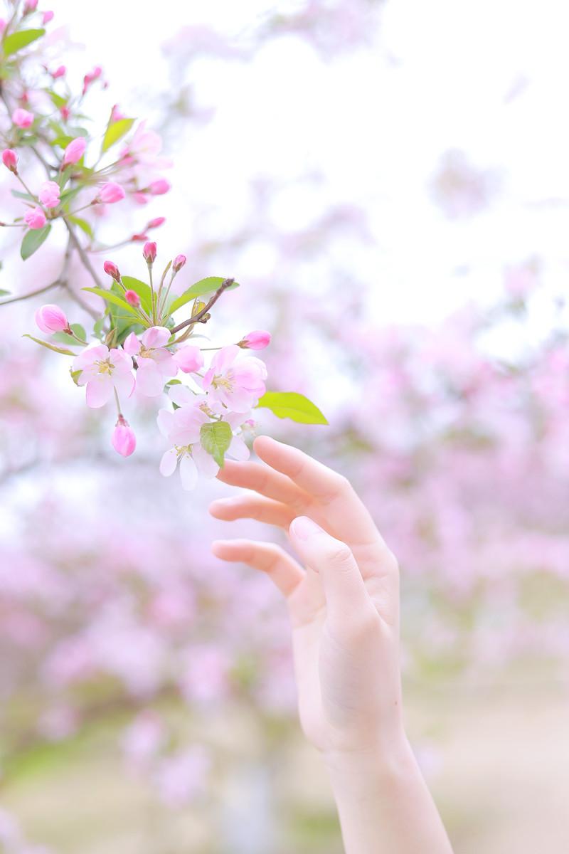 想在初春时见你